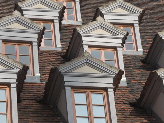 Dach, Dachlandschaft, Naumburg