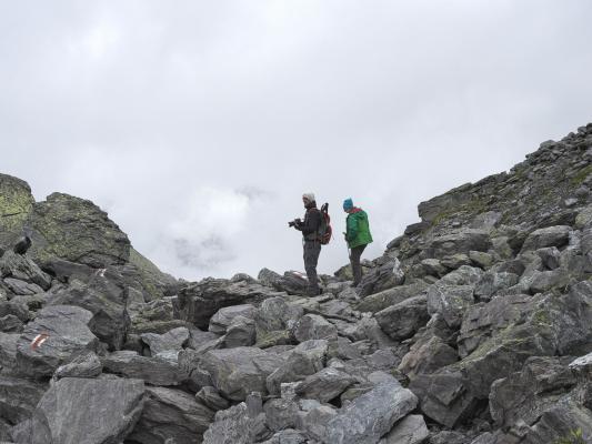 Bergsee, Robert, See