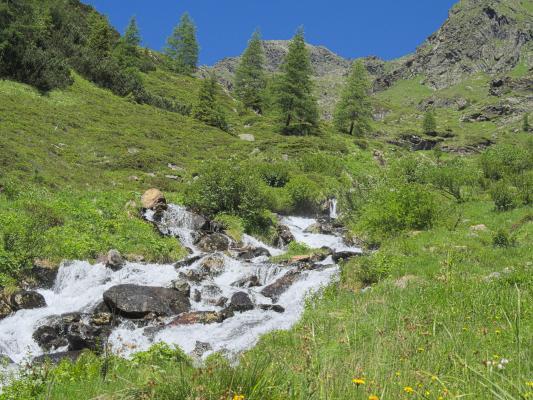 Alpen, Mitten und Umgebung, Schobergruppe, Wangenitztal