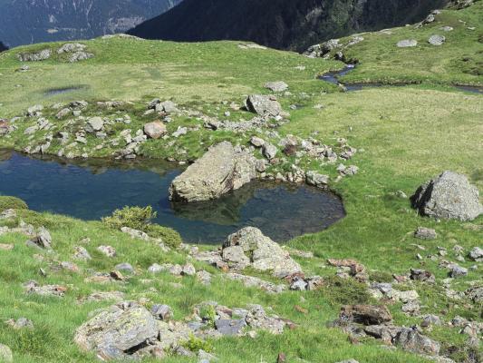 Alpen, Bergsee, Mitten und Umgebung, Schobergruppe, Wangenitztal
