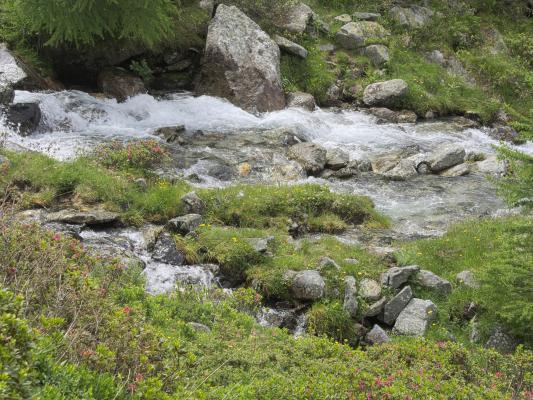 Alpen, Dösental, Mallnitz, Mitten und Umgebung