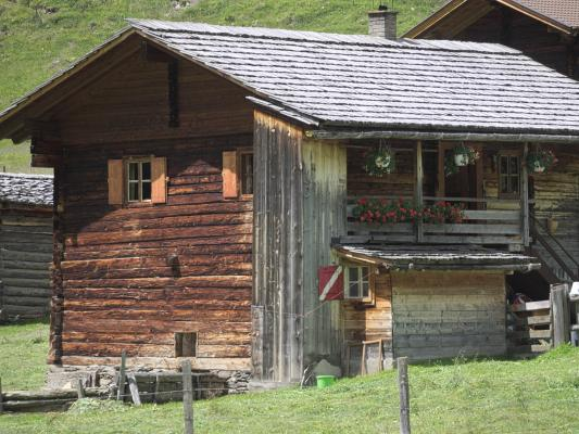 Alpen, Asten, Astner Moos, Holz, Mitten und Umgebung, Österreich