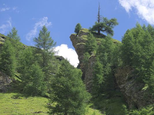 Alpen, Asten, Mitten und Umgebung, Österreich