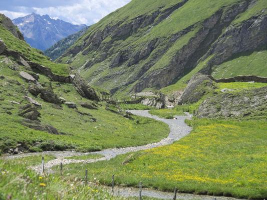 Alpen, Asten, Bach, Mitten und Umgebung, Wasser, Österreich