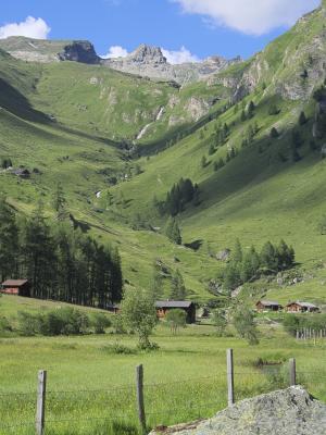 Alpen, Asten, Astner Moos, Mitten und Umgebung, Schatten, Österreich