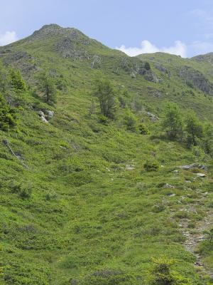Alpen, Anna Schutzhaus Ederplan, Loneskopf, Mitten und Umgebung, Österreich