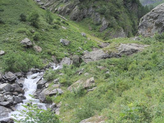 Alpen, Auvergne-Rhône-Alpes, Frankreich, Lanchatra, Venosc