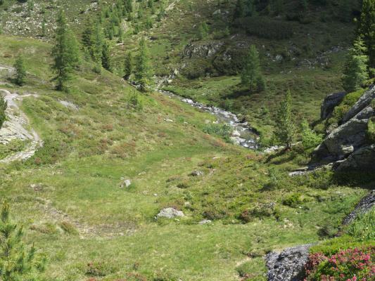 Alpen, Kreuzeckgruppe, Mitten und Umgebung, Staller Wölla, Österreich