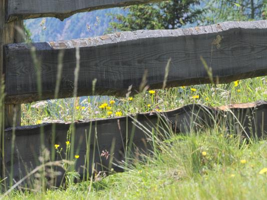 Hohe Tauern, Mitten und Umgebung, Mittener Kaser, Österreich