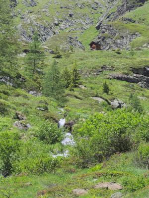 Alpen, Mitten und Umgebung, Schobergruppe, Wangenitztal, Österreich