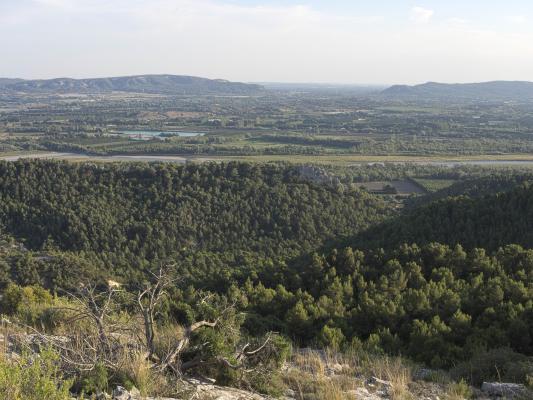 Frankreich, Gorges de Régalon, Provence-Alpes-Côte d'Azur
