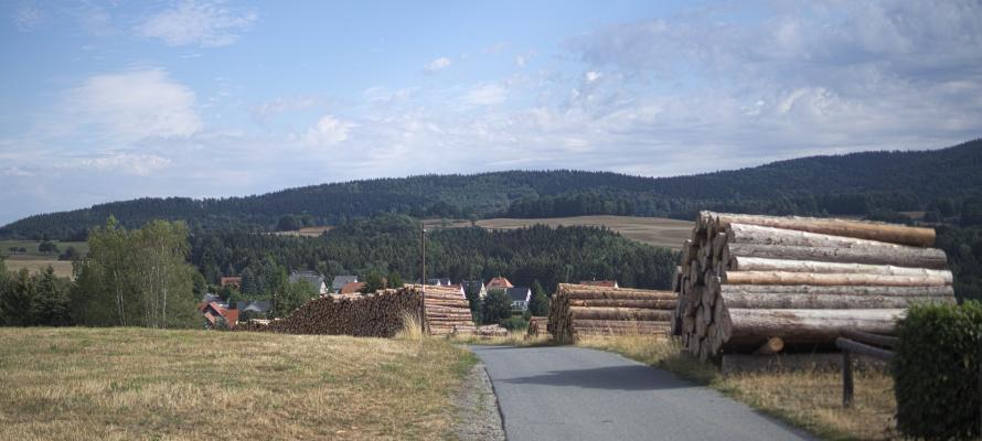 Endlerkuppe, Sächsische Schweiz