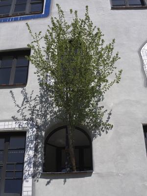 Architektur, Sachsen-Anhalt, Wittenberg