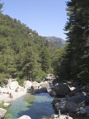 Frankreich, Gebirgsbach, Korsika, Wasser