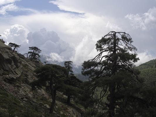 Frankreich, Gebirgsbach, Gewitter, Golo-Tal, Korsika, Wasser, Wolken