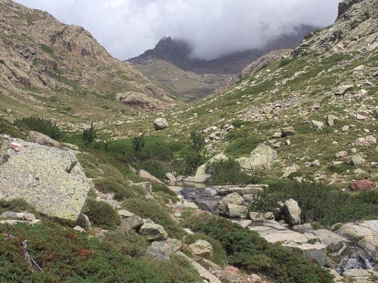 Frankreich, Gebirgsbach, Golo-Tal, Korsika, Wasser