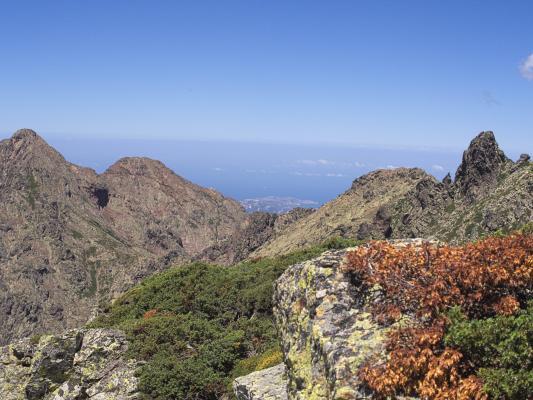 Frankreich, Haute Asco, Korsika