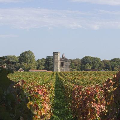 Burgund, Frankreich, Herbst